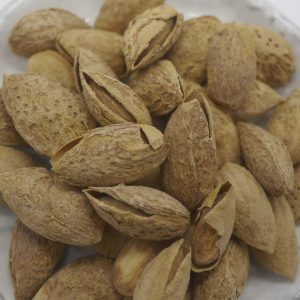 shelled almond2
