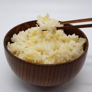 原生種小米.1jpg
