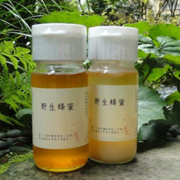 寶茶野生蜂蜜v3 300x300